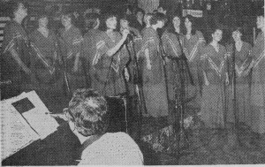 1981 dec pauwkes